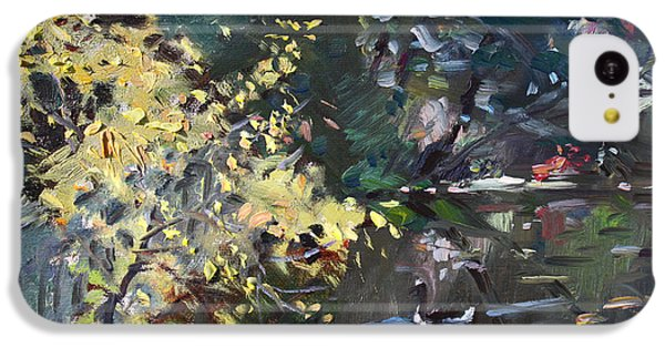 Fall By The Pond IPhone 5c Case