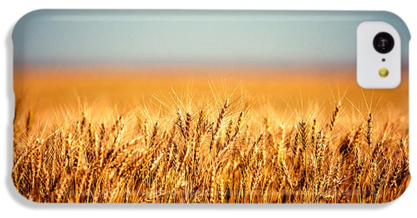 Rural Scenes iPhone 5c Case - Field Of Wheat by Todd Klassy