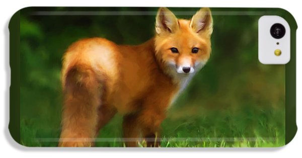 Fiery Fox IPhone 5c Case