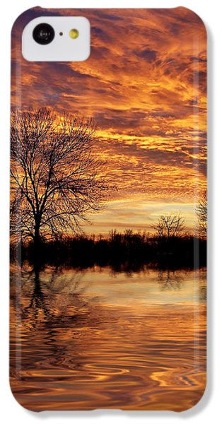 Fire Painters In The Sky IPhone 5c Case by Bill Pevlor