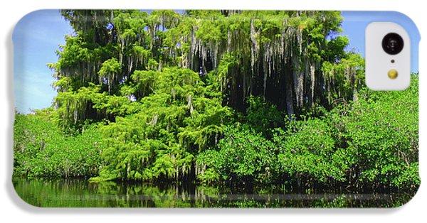 Crocodile iPhone 5c Case - Florida Swamps by Carey Chen