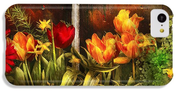 Garden iPhone 5c Case - Flower - Tulip - Tulips In A Window by Mike Savad