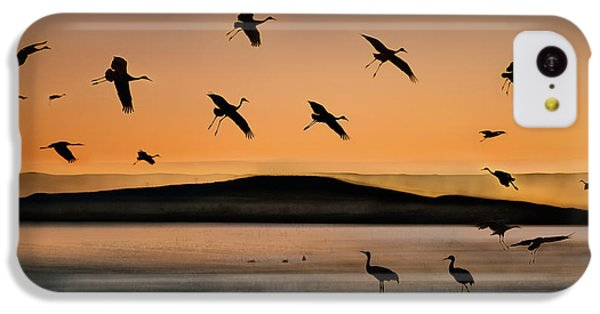 Fly-in At Sunset IPhone 5c Case