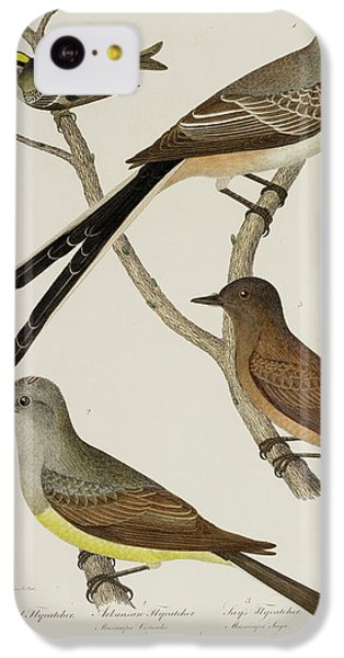 Flycatcher iPhone 5c Case - Flycatcher And Wren by British Library