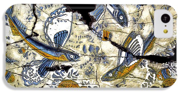 Flying Fish No. 3 IPhone 5c Case