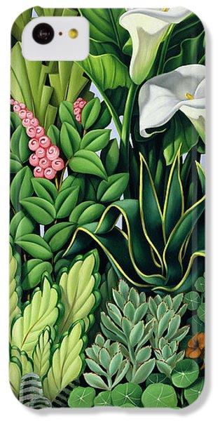 Garden iPhone 5c Case - Foliage by Catherine Abel