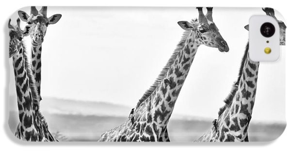 Four Giraffes IPhone 5c Case by Adam Romanowicz