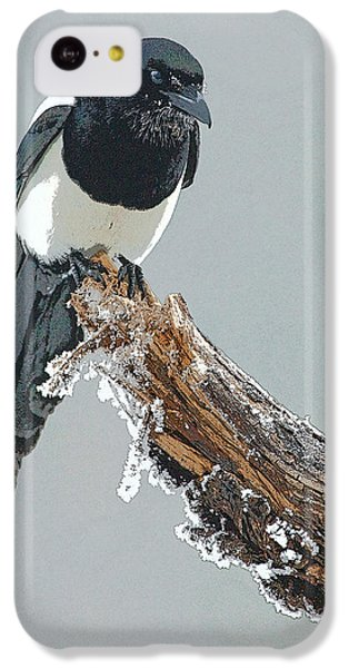 Frosted Magpie- Abstract IPhone 5c Case