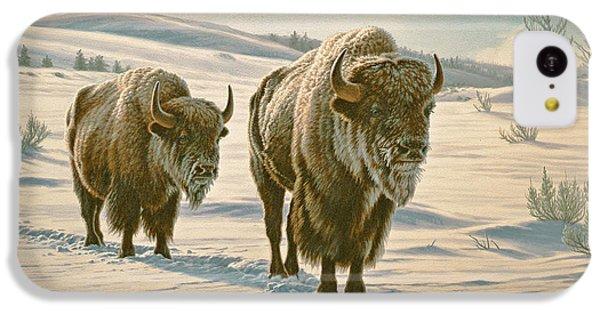 Frosty Morning - Buffalo IPhone 5c Case by Paul Krapf