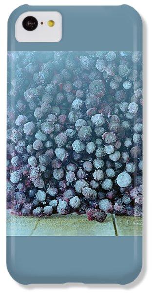 Frozen Blueberries IPhone 5c Case