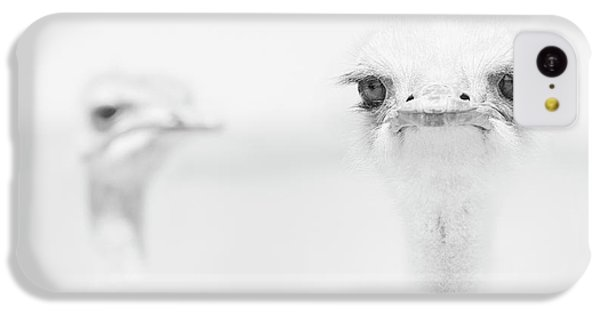 Funny Ostrich IPhone 5c Case