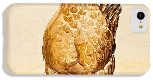 Rooster iPhone 5c Case - George's Hen And Her Chicks by Alison Cooper