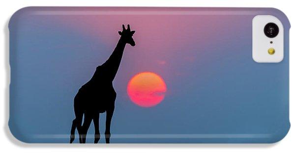 Giraffe At Sunset Chobe Np Botswana IPhone 5c Case by Andrew Schoeman