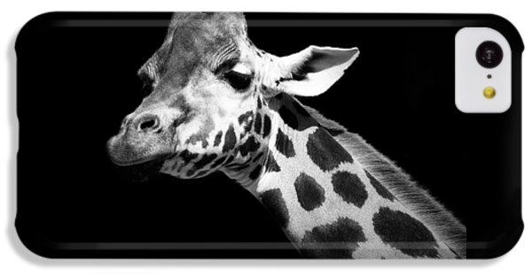 White iPhone 5c Case - Portrait Of Giraffe In Black And White by Lukas Holas