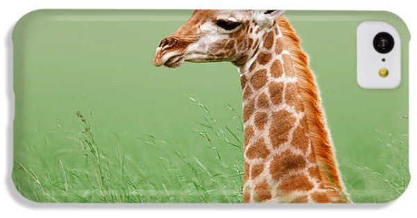 Giraffe Lying In Grass IPhone 5c Case by Johan Swanepoel
