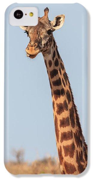 Giraffe Tongue IPhone 5c Case by Adam Romanowicz