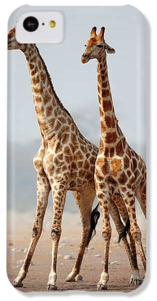 Giraffes Standing Together IPhone 5c Case