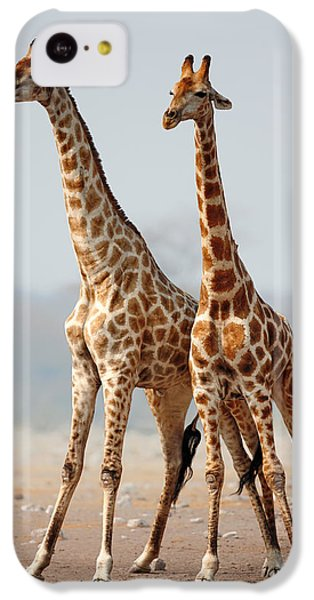 Giraffes Standing Together IPhone 5c Case by Johan Swanepoel