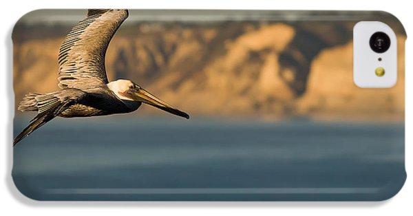 Pelican iPhone 5c Case - Gliding Pelican by Sebastian Musial
