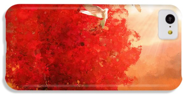 God's Love IPhone 5c Case by Lourry Legarde