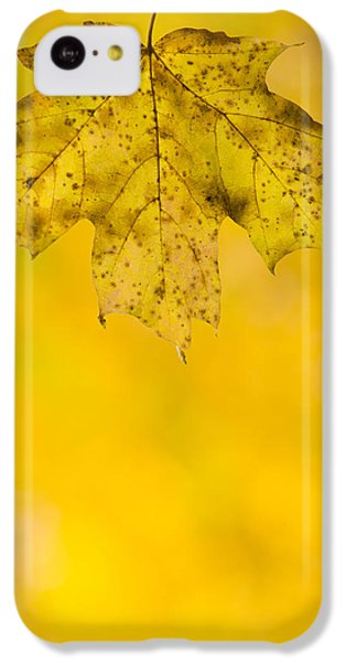 IPhone 5c Case featuring the photograph Golden Autumn by Sebastian Musial