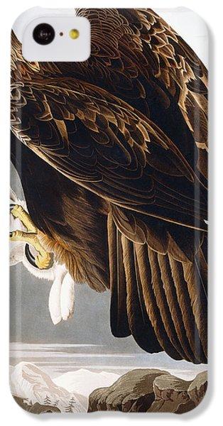 Golden Eagle IPhone 5c Case by John James Audubon