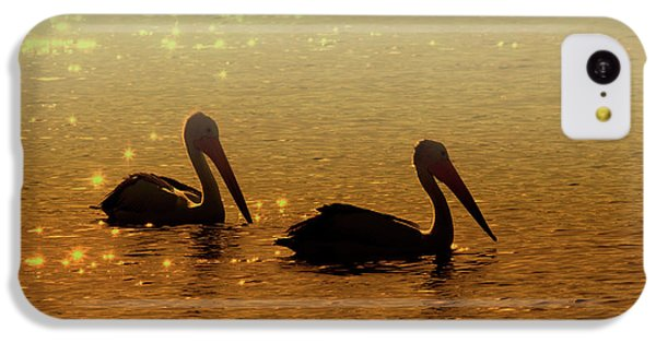 Pelican iPhone 5c Case - Golden Morning by Mike  Dawson