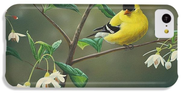 Finch iPhone 5c Case - Goldfinch And Snowbells by Peter Mathios