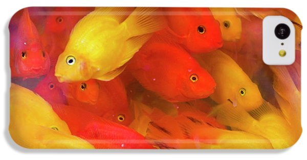 Goldfish At Goldfish Market, Hong Kong IPhone 5c Case by Peter Adams