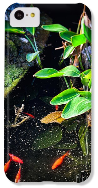 IPhone 5c Case featuring the photograph Goldfish In Pond by Silvia Ganora