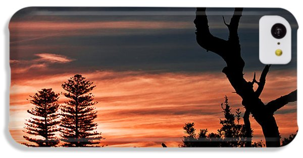 IPhone 5c Case featuring the photograph Good Night Trees by Miroslava Jurcik