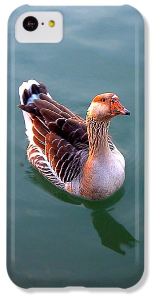 Goose IPhone 5c Case