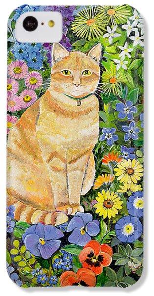 Gordon S Cat IPhone 5c Case