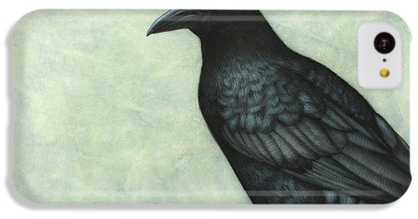 Grackle IPhone 5c Case by James W Johnson