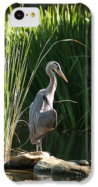 Great Blue Heron IPhone 5c Case by Ellen Henneke