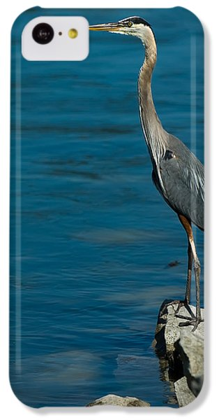 Great Blue Heron IPhone 5c Case by Sebastian Musial