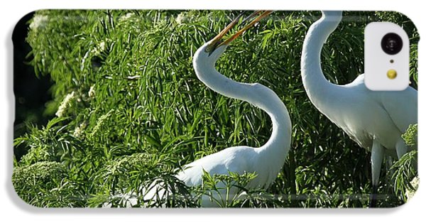 Great White Egret Lovers IPhone 5c Case