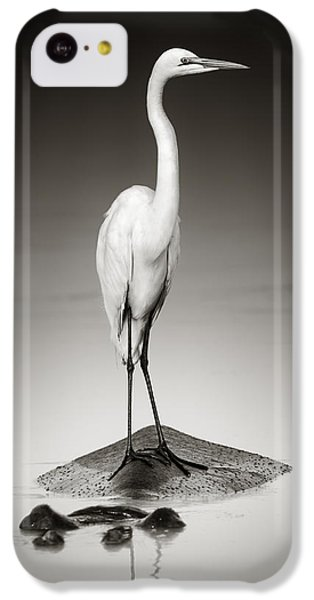 Hippopotamus iPhone 5c Case - Great White Egret On Hippo by Johan Swanepoel