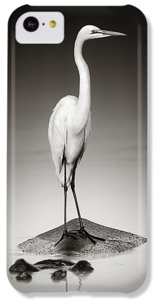 Great White Egret On Hippo IPhone 5c Case by Johan Swanepoel