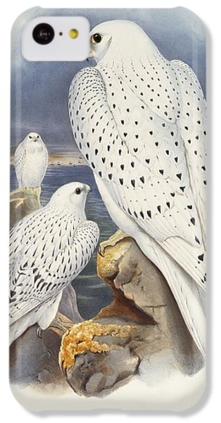 Greenland Falcon IPhone 5c Case by John Gould