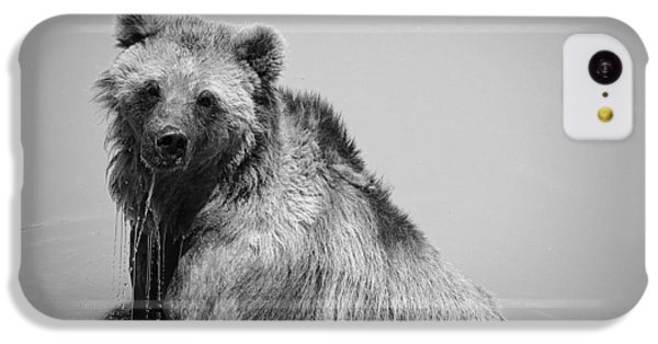 Grizzly Bear Bath Time IPhone 5c Case
