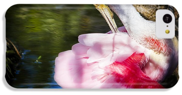 Preening Spoonbill IPhone 5c Case by Mark Andrew Thomas