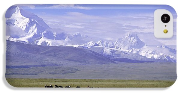 Group Of Yaks Walk Across A Green IPhone 5c Case