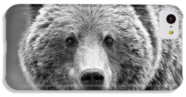 Brown Bear iPhone 5c Case - Happy Bear by Stephen Stookey
