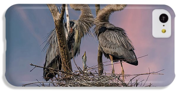 Heron iPhone 5c Case - Happy Family Trio by Kevin Wang