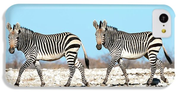 Hartmann's Mountain Zebra IPhone 5c Case