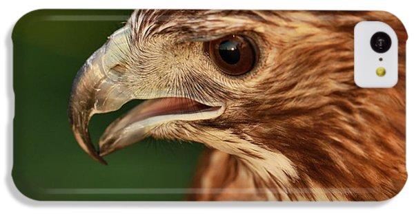Hawk Eye IPhone 5c Case