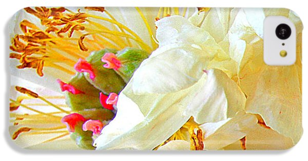 IPhone 5c Case featuring the photograph Heart Of Peony by Nareeta Martin
