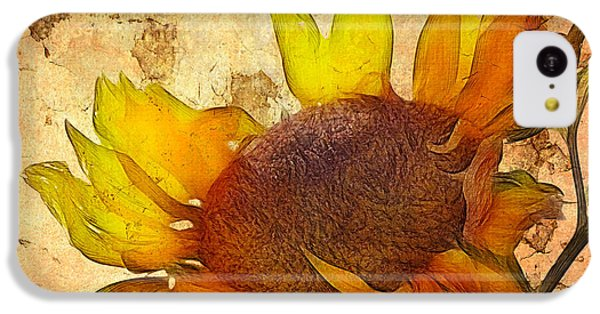 Helianthus IPhone 5c Case by John Edwards
