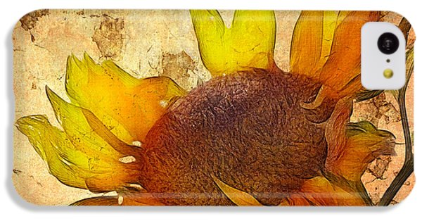 Sunflower iPhone 5c Case - Helianthus by John Edwards